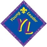What is the Young Leaders Scheme?