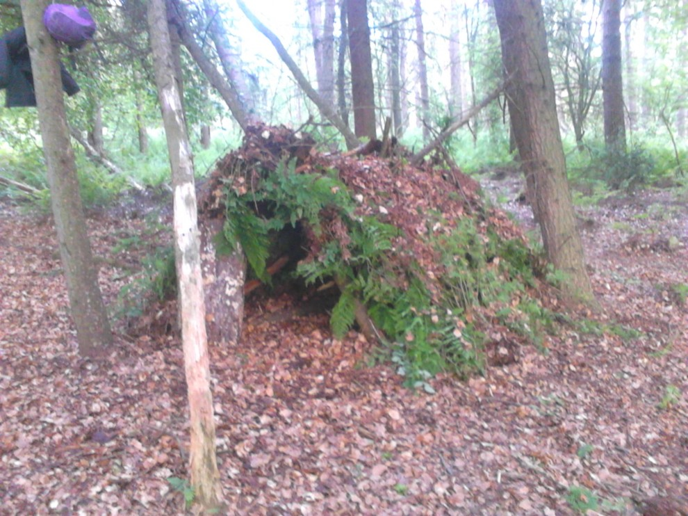 2015-06-08 Scout Bivies Townhill Woods
